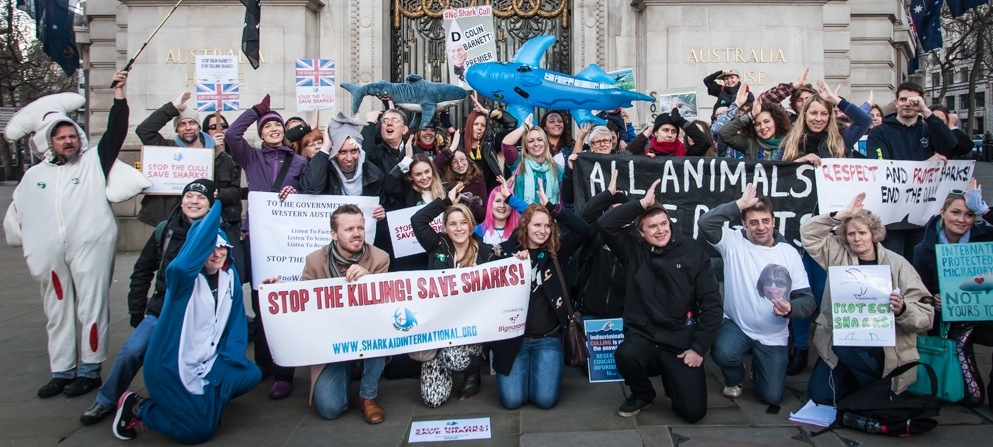 noWAsharkcull-LONDON-RALLY-Shark-Aid-International