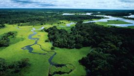 Meer met minder in de Braziliaanse landbouw